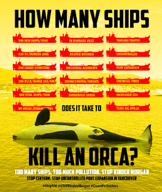 How Many Ships Does It Take to Kill an Orca?